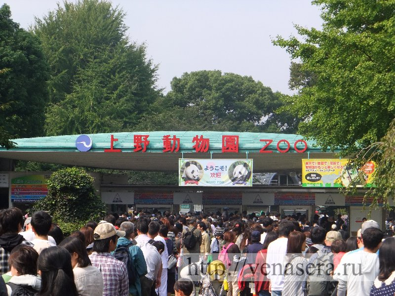 Вход в Зоопарк Уэно