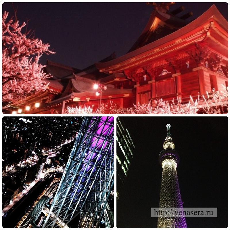 Асакуса и Токийское небесное дерево