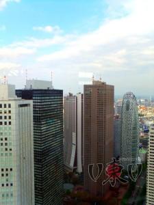 Токийская мэрия. Вид из окна.