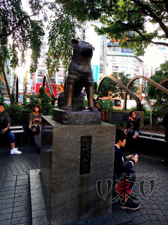 Статуя Хатико. Сибуя.