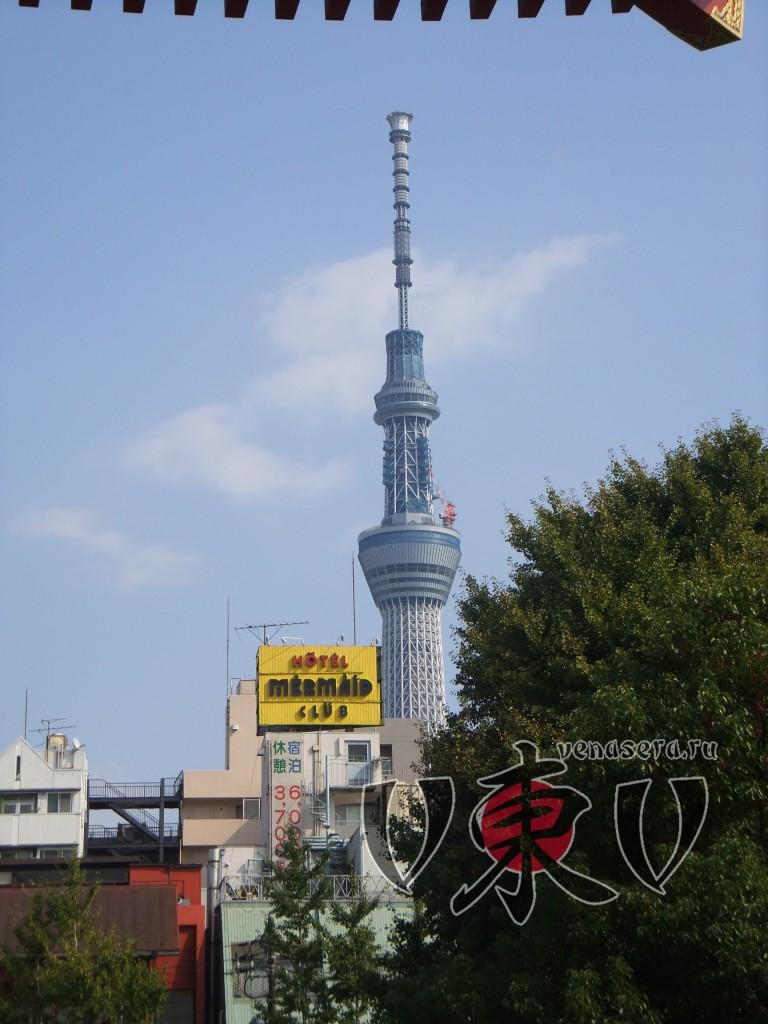 Токийское небесное дерево