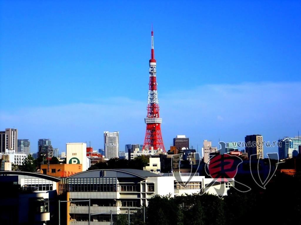 Вид на Токийскую башню. Роппонги Хиллз.