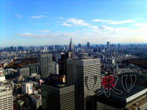 Токийская мэрия. Вид на Токио.