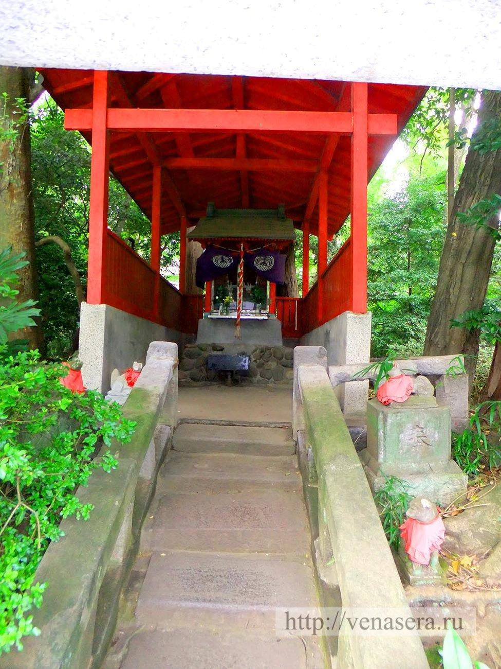 Парки Японии. Парк Китидзёдзи.