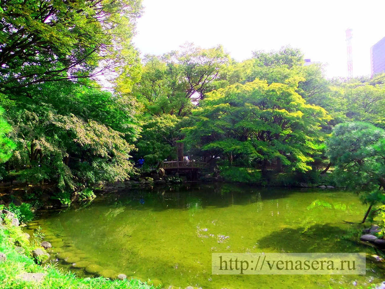 Парки Японии. Парк Хибия.