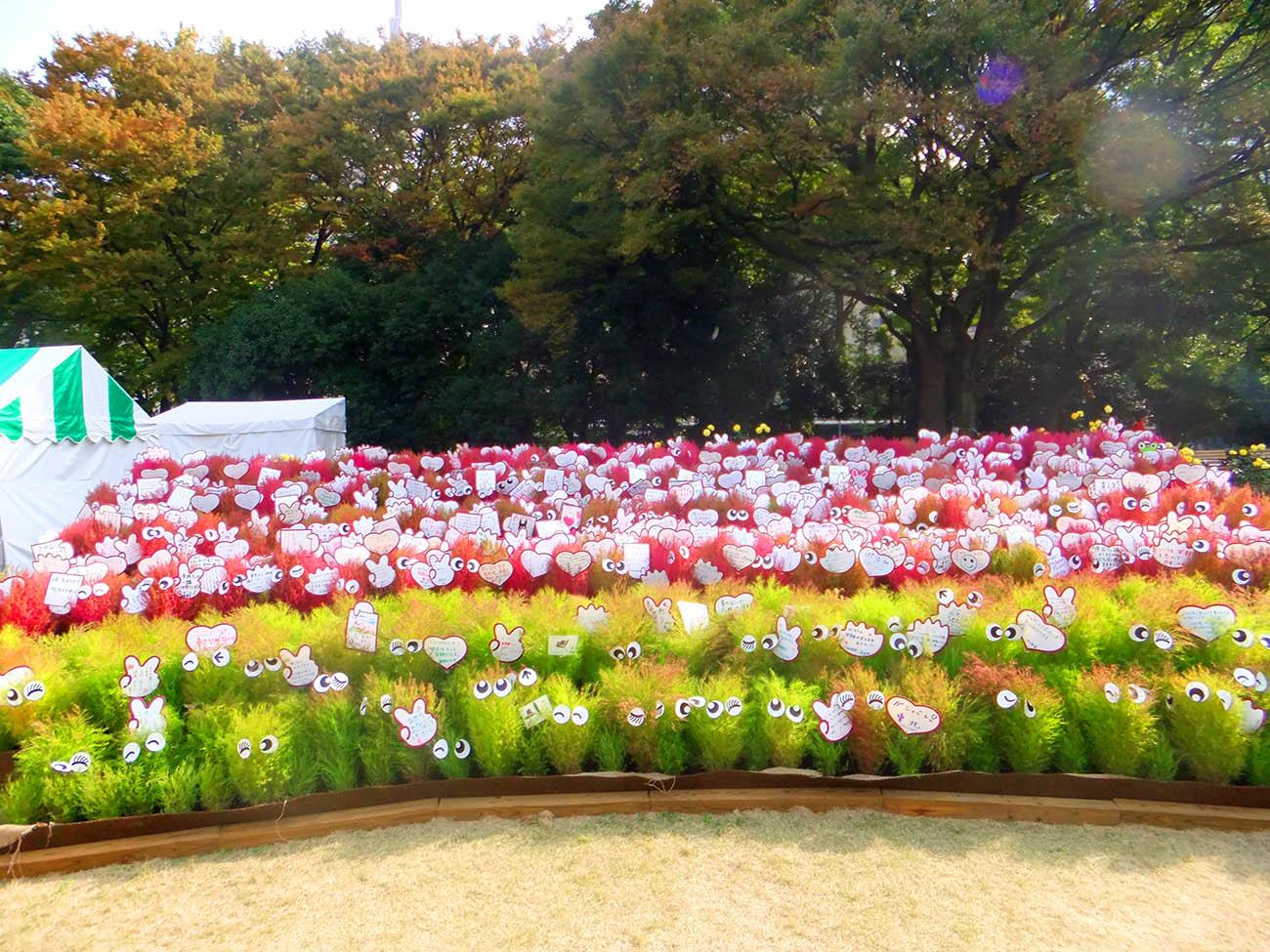 Фестиваль цветов. Токио.