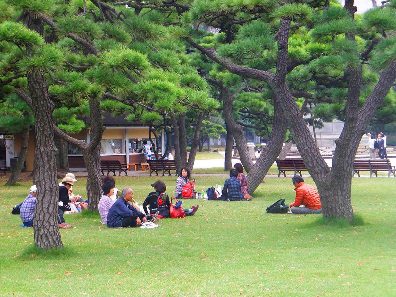 Пикник у императорского дворца в Токио